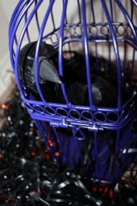 purple cage