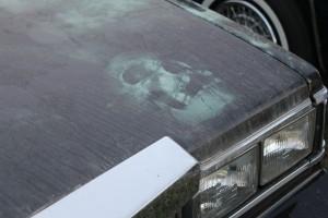 hearse face